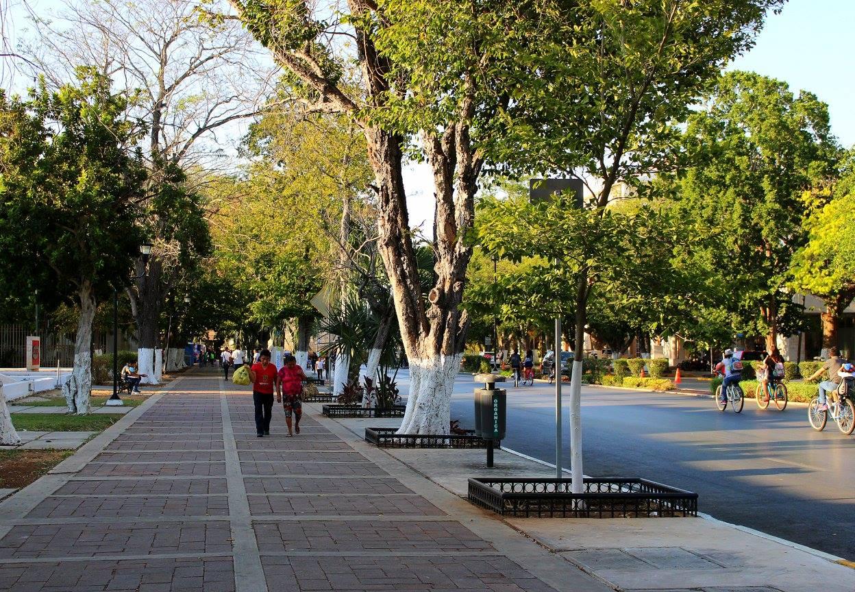 un paseo por Mérida, qué hacer