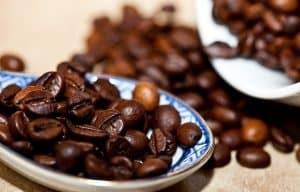 Granos de café - zona cafetalera