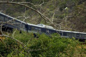 Chepe Express Bosque