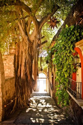 Reseña Hotel Posada del Hidalgo Jardín